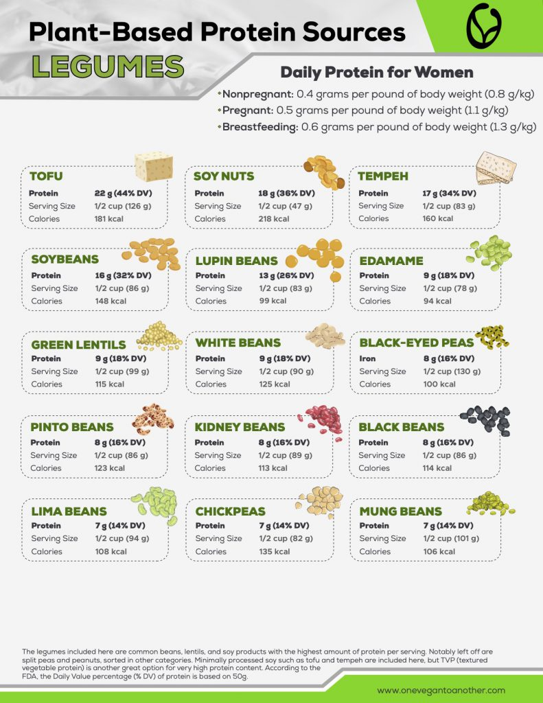 Plant-Based Protein Sources LEGUMES