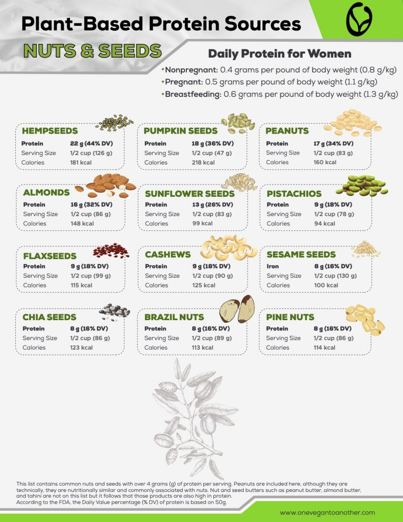 Plant-Based Protein Sources NUTS & SEEDS